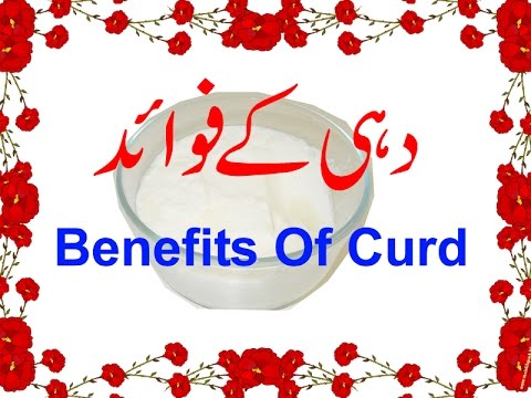 Dahi Ke Fawaid - Benefits Of Curd - Yogurt Health Benefits