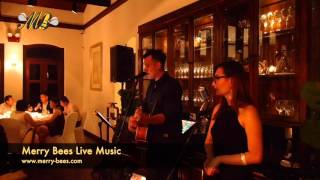 Merry Bees Live Music - PX & John sing Bridge Over Troubled Water (Simon Garfunkel cover)