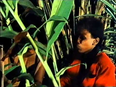 SAIKATI directed by Anne Mungai (90 minutes | 1992 Kenyan fiction film)