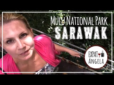Borneo   Bats, Caves & Skywalks at Mulu National Park   Malaysia Luxury Travel Blog