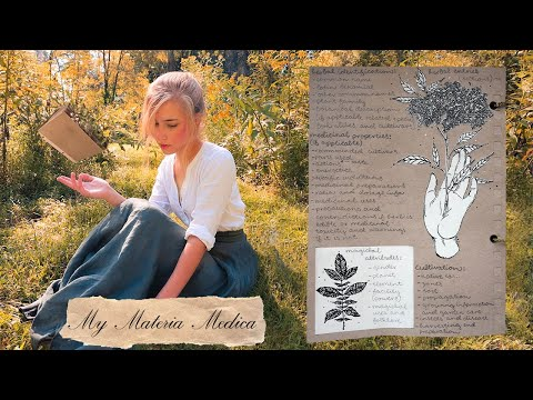 How a Green Witch Profiles Herbs || My Materia Medica Entries
