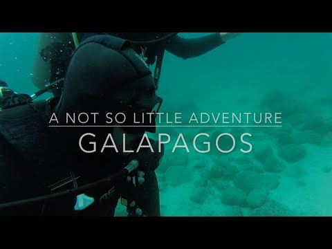 A Not So Little Adventure // Galapagos