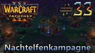 Druidenrettung - Nachtelfenkampagne - WarCraft III: Reforged #33