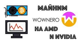 Майним Wownero (WOW) на видеокартах AMD и Nvidia