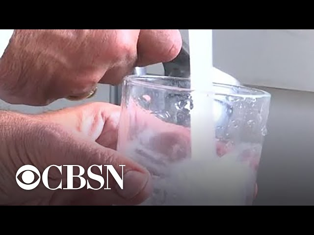 Study finds more microplastics in bottled water than tap