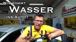 Die Autodoktoren - Wasser im Auto