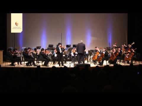 J. S. Bach - Concierto para violìn y orquesta de cuerdas de Mi Mayor Nº 2 BWV 1042- Allegro