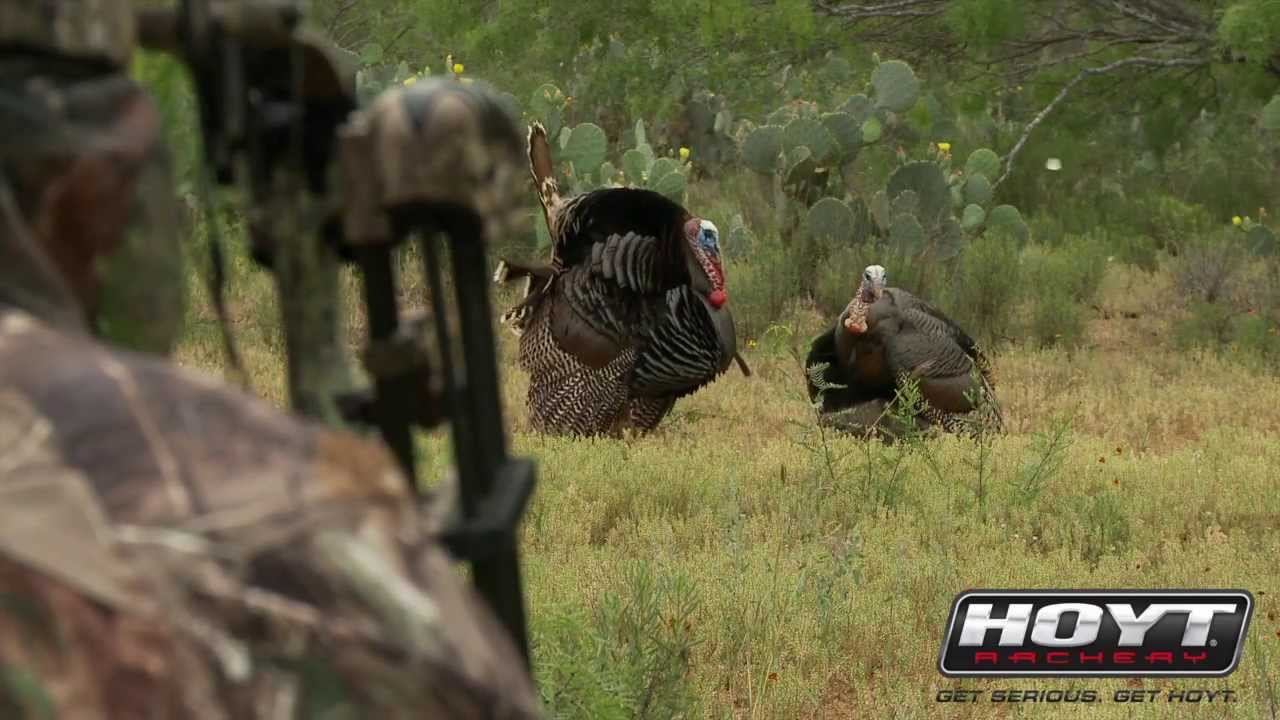 Turkey Hunting Decoy Setups that Drive Gobblers Insane