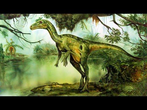 Первые динозавры (рассказывает палеонтолог Ярослав Попов)
