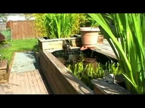 Learn how to build your own raised koi pond youtube for Making a koi pond