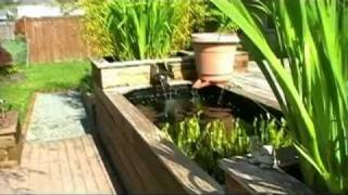Learn How To Build Your Own Raised Koi Pond