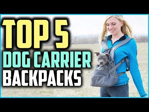Top 5 Best Dog Carrier Backpacks for Hiking in 2019