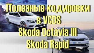 Лучший Сборник кодировок для Skoda Octavia III, Rapid в VCDS Вася Диагност