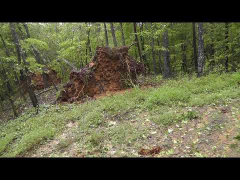 Hurricane Irma Damage in North Georgia...many trees down