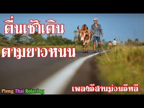 เพลงอีสานไทบ้าน เพลงอีสานม่วนอีหลี 2559 (Relaxing Thai Music)