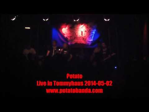Potato-Banda live im Tommyhaus