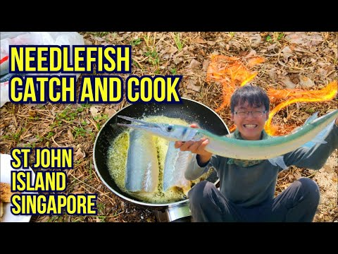 Catch And Cook Needlefish At St John's Island!