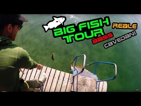 Big fish tour - A pesca sul Lago Di GARDA !!!