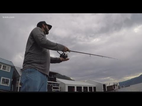 50 Walleye Worth $1,000 Waiting To Be Caught In Lake Pend Oreille