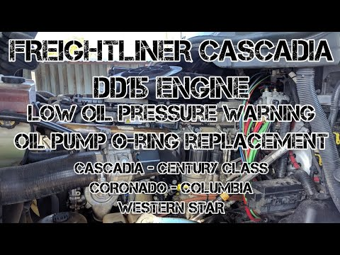 Freightliner Cascadia DD13 DD15 oil pressure low oil pump o-ring  replacement oil pressure warning
