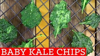 Kale Chips! Healthy Snack Recipe -Thirty Second Thursdays by Mind Over Munch