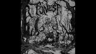 Funest - Fornicate The Deceased