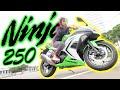 【増車!?】スポーツバイクがカッコ良すぎる…!!【kawasaki ninja 250】