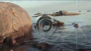 Финский залив клип