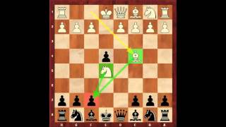 Chess for Beginners. Chess Openings #4. Opening Examples. Eugene Grinis. Chess