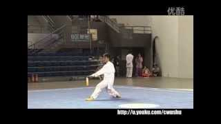 Chen Style Tai Chi Sword/Chen Style Taiji épée/规定陈式太极剑