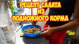 Рецепт салата из подножного корма