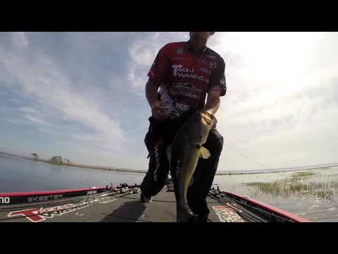 GoPro: Jared Lintner Toledo Day 2 catches