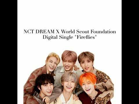 NCT DREAM X World Scout Foundation  Digital Single Fireflies Lyrics Video  By NCT SongsMMSub