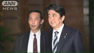 日本政府、ヨルダン側の交渉の行方見守る方針(15/01/30)