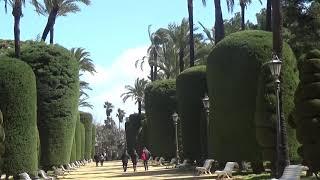 Geheimnis vom Parque Genovés ( Park Genoves ) | Cadiz Spanien thumbnail