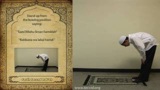 Houston Blue Mosque How to Pray in Islam How to Pray - Asr (Afterno...