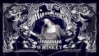 HARAMKHORS new punjabi song 2013 - NACCHO! Imran khan, Honey Singh, RDB, Bohemia isme nahi hein