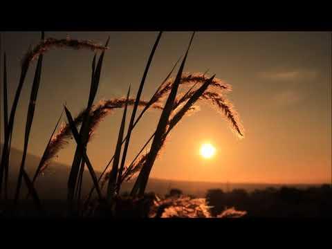 Background Video) Pemandangan Senja Yang Indah, - YouTube