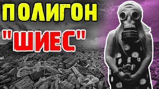 Протест против свалки в Шиесе   Ветерана лишили пенсии   Жизнь в России