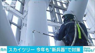 634メートルの高さから雪が落ちるのを防ごうと、東京スカイツリーでこの...