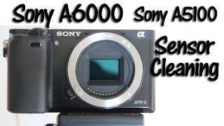 Sony A6000 Sensor Cleaning