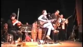 Davide Camerin - Mr.Sun (Live in Asolo TV)