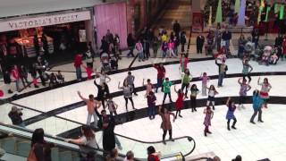 Flash mob Quakerbridge mall