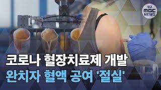[대구MBC뉴스] 혈장치료제 위해 완치자 혈장 공여 절실