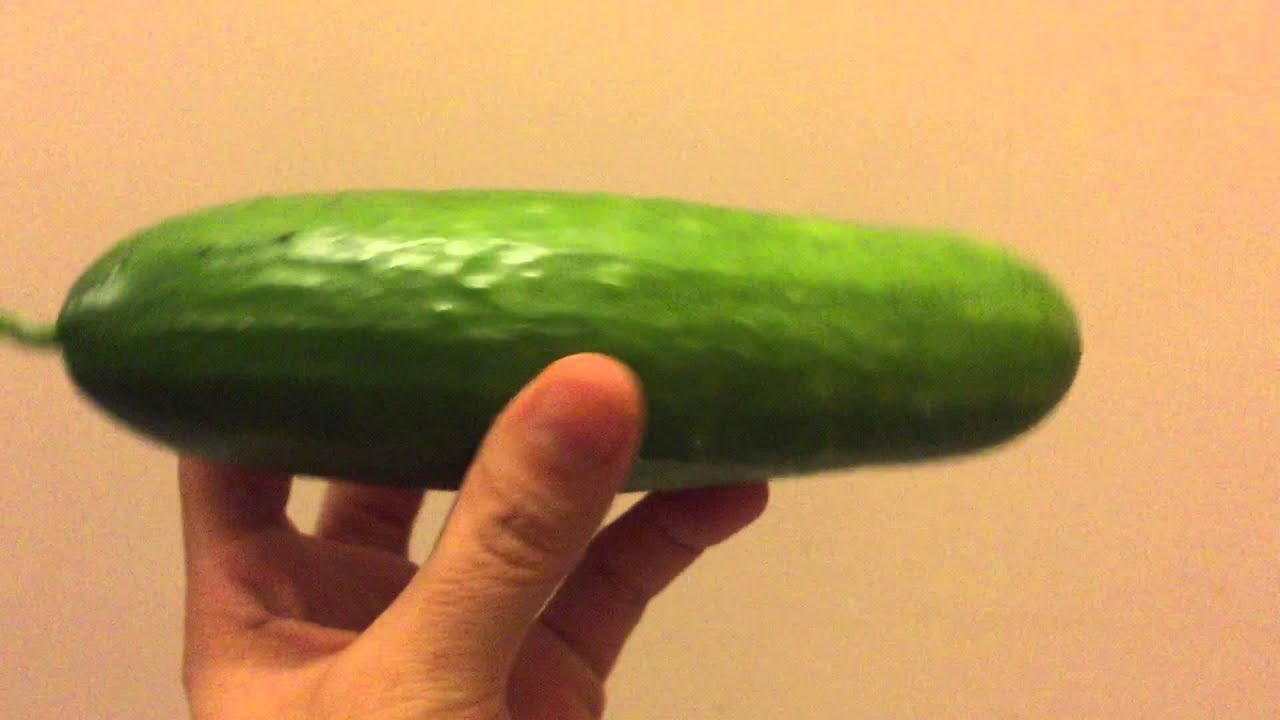 Harvesting An English Cucumber From My Own Garden حصاد خيار إنجليزي من محميتي Youtube