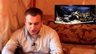 Интерактивный аквариумный туризм сезон 2 - Итоги 2/5 (Вадим Шарифулин)