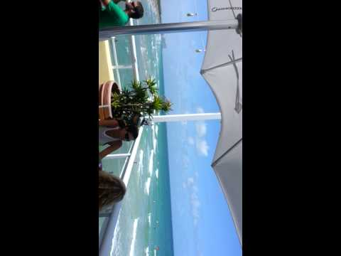 Summer Seaside in Dania Beach, Hollywood Beach, Ft Lauderdale beach, FL by Eileen Burns