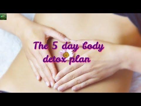 The 5 Day Body Detox Plan