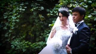 Шымкент свадьба 2016