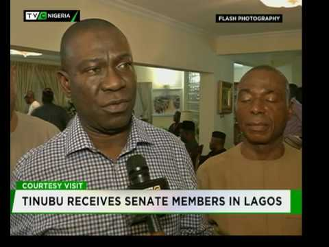 Tinubu receives Senate members in Lagos